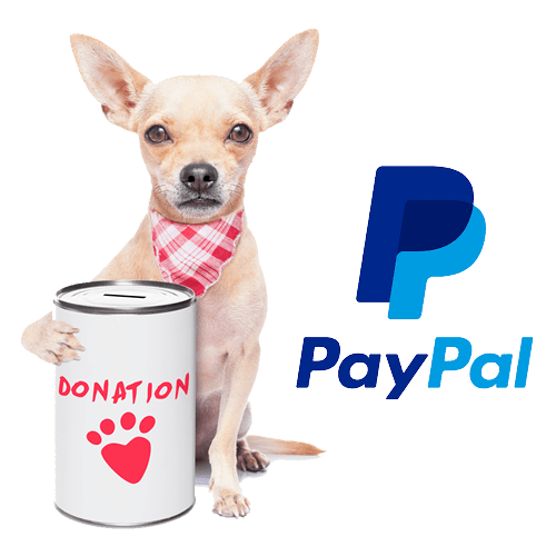 Donation-PayPal