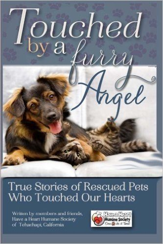 Touched-By-A-Furry-Angel