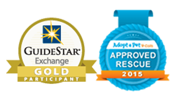Gold-Star-and-Adopt-a-Pet-Certified